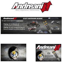 FACTORY EXHAUST SCALVINI RACING FANTIC MOTOR BY AXENDP