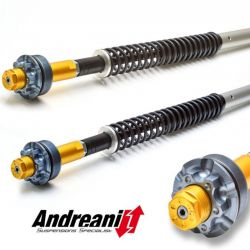 FACTORY EXHAUST KTM SCALVINI RACING BY AXENDP